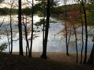 800px-Walden_Pond_in_October,_Concord_MA