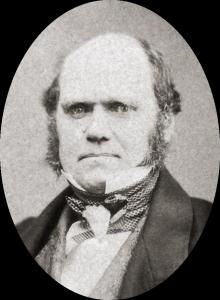 Charles_Darwin_by_Maull_and_Polyblank,_1855-crop