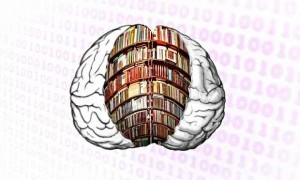 Books-on-the-brain-012