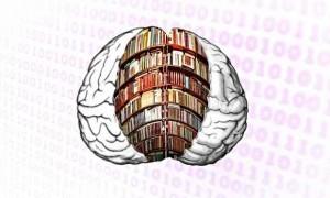 Books-on-the-brain-012