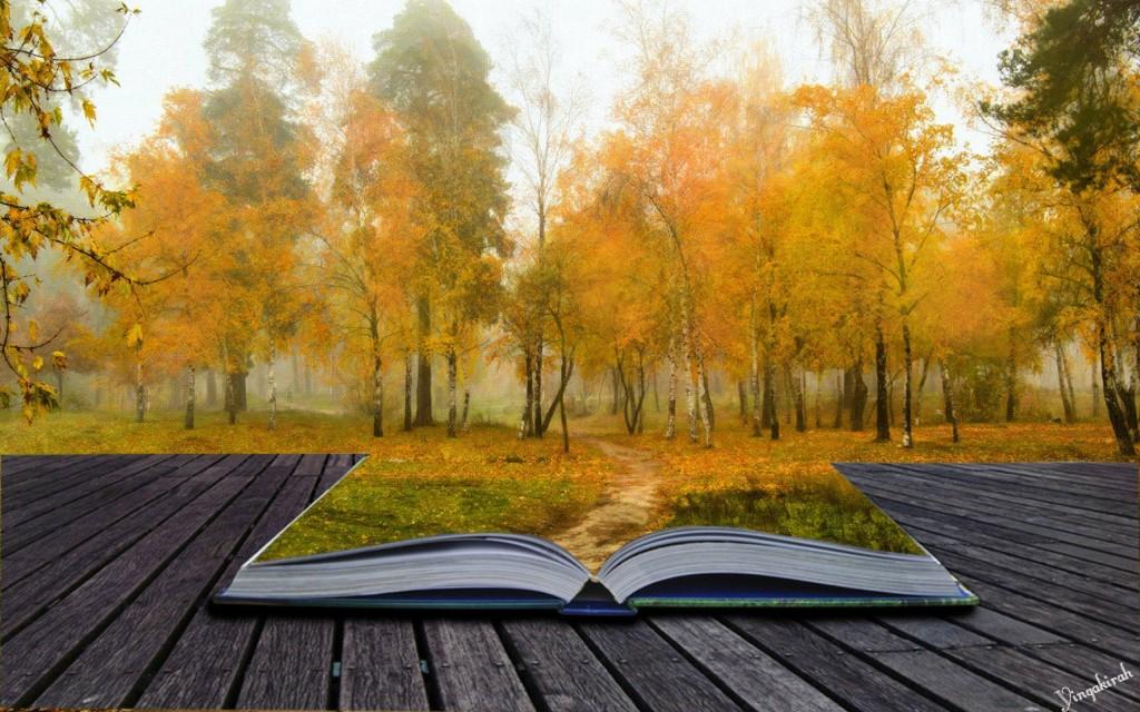 ws_autumn_book_2560x1600