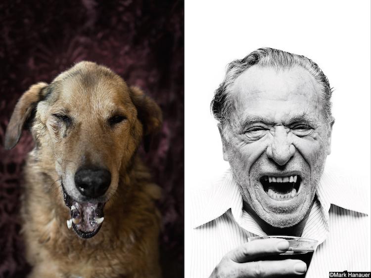 Кучето Уол Стрийт и Чарлз Буковски