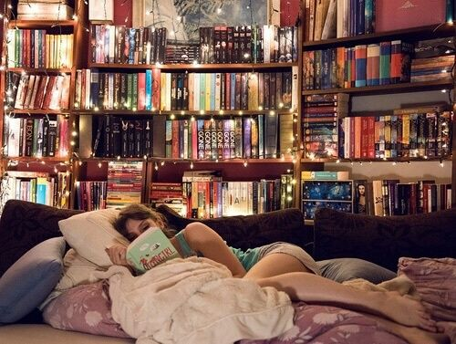 48018478f2d36c936d0dce220518b6de--books-bedroom-bedroom-library