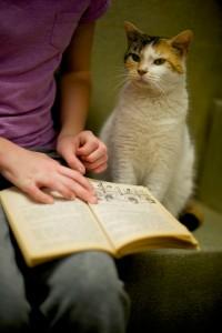 "Kaitlyn Karkoska reads to ""Jingles"""