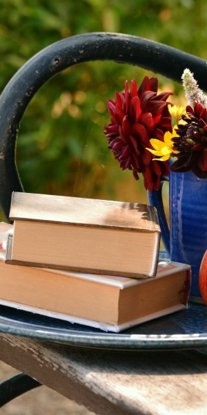 books-1578589_1920