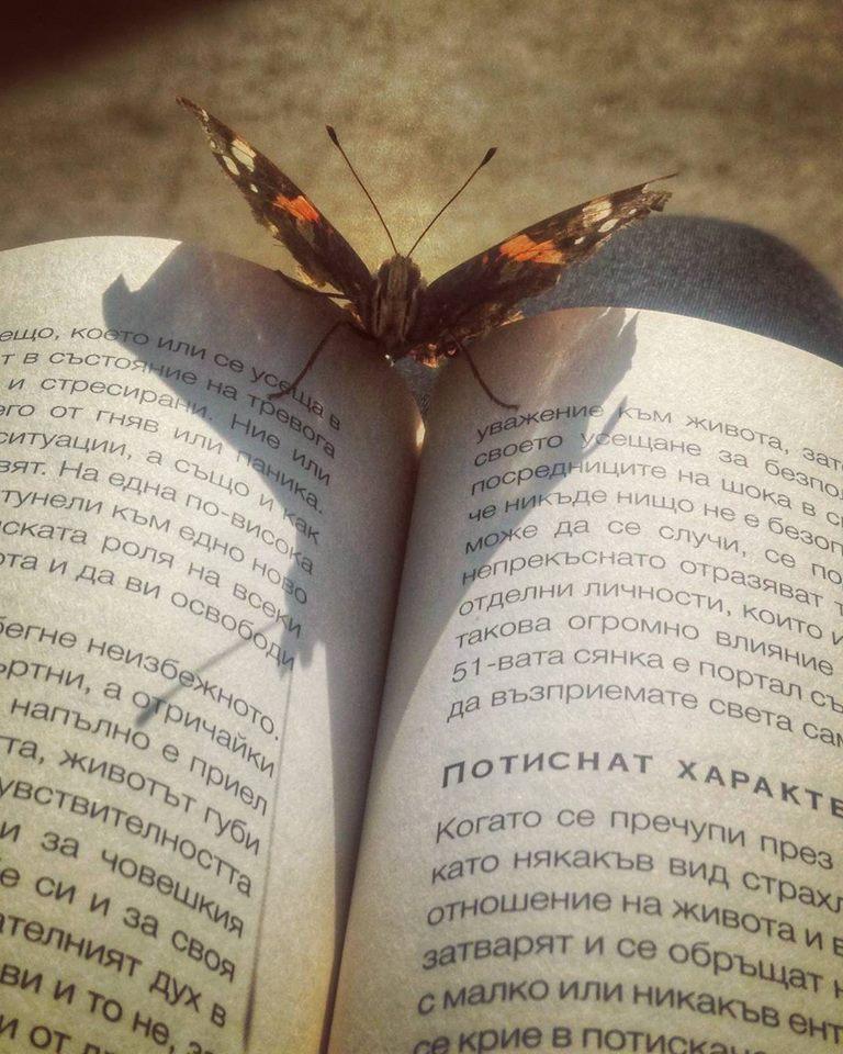 """""""Четем си заедно за ген ключовете 💛 Дори и пеперудата е любопитна  ;) Толкова дълбоко усещане за хармония!"""" (Марги)"""