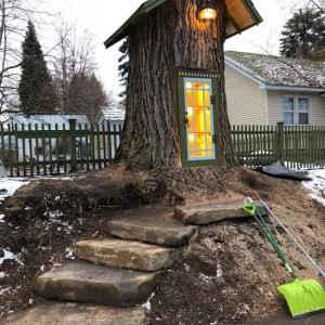 dead-tree-little-free-library-sharalee-armitage-howard-1-5c3471b674d82__700