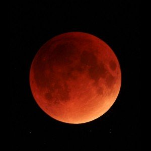 lunar-eclipse-sep-28-2015-deanne-fortnam-4