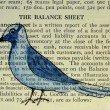 bird-625374_1920