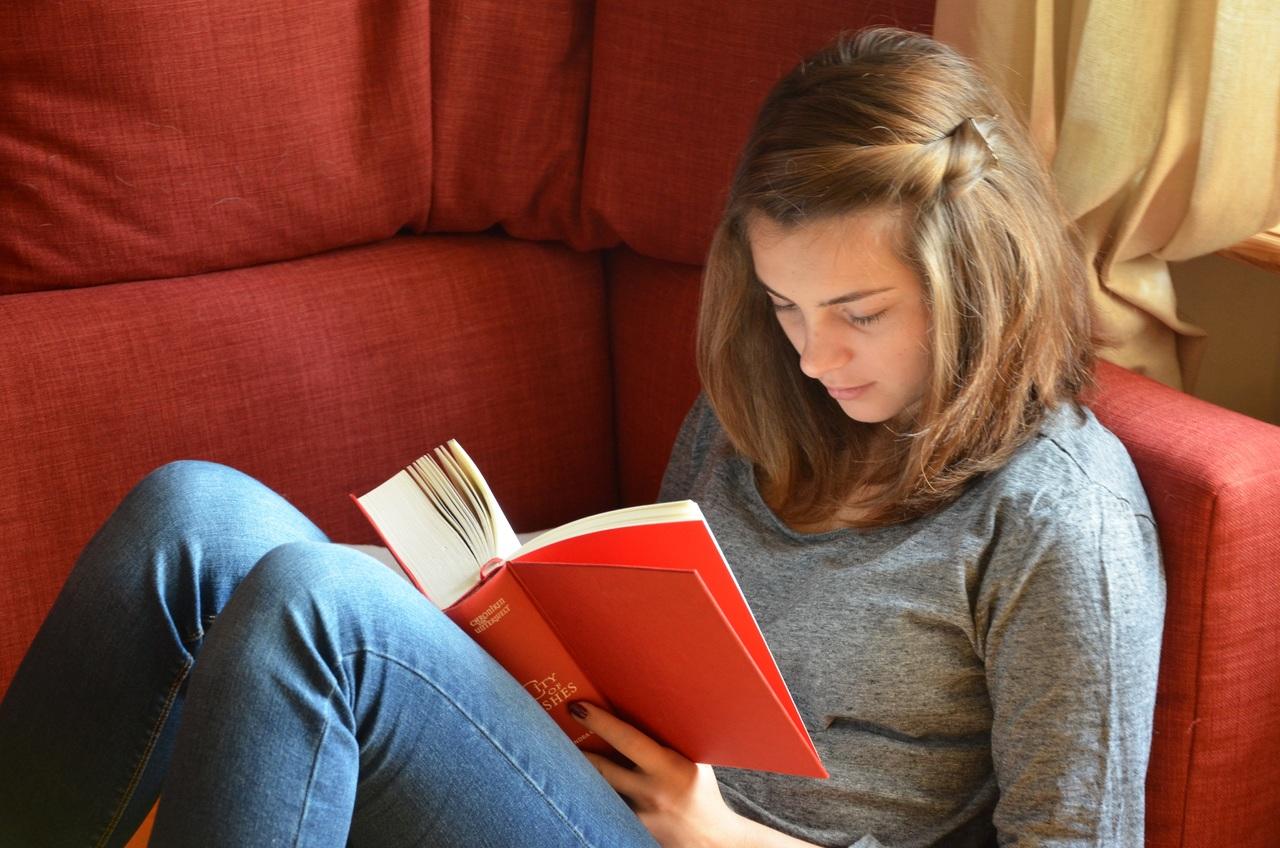 hand-book-novel-read-person-girl-923667-pxhere.com