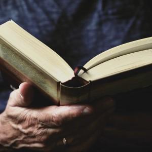 book-3531412_1920